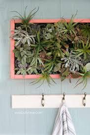 diy vertical succulent garden lolly jane