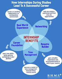 Work Experience Combined With Studies The Key For A Successful Career