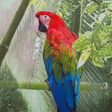 parrot shower curtain wonderful decoration