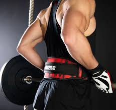 Gym Weight Lifting Belt