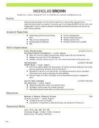 Babysitting Resume Templates Adorable Babysitting Bio Resume Sample From Babysitting Resume Templates