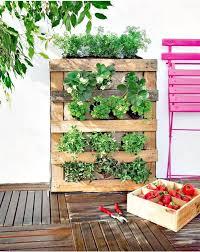 diy pallet vertical garden on low budget
