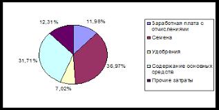 Курсовая работа Себестоимость продукции растениеводства на  Рисунок 1 Структура себестоимости зерна в СПК Октябрь в 2005 году