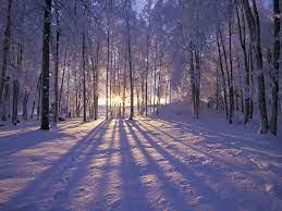 Winter Pictures For Desktop Backgrounds ...