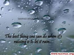 Rain Quotes Enchanting Quotes About Rainy Season 48 Quotes