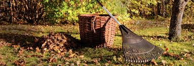 11 Fall Gardening Tips | Right@Home®