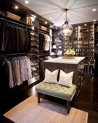 dream closet design in moody colors