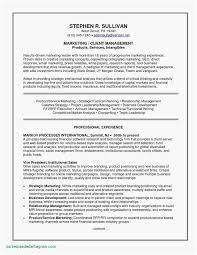 Resume Builder Online Luxury Write Resume Line Best 30 Resume
