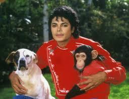 Michael Jackson Wallpaper For Bedroom Michael Jackson Pets Chimpanzee Tiger Snake Dog