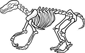 Dog Bones Coloring Pages Futuramame