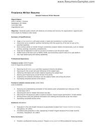 Sample Photographer Resume Freelance Photographer Resume Job