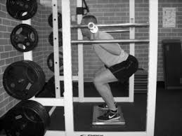 Image result for isometric squat in rack