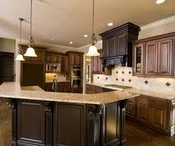color kitchen dark cabinets home