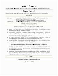 Cv Resume Example Doc Lovely Student Resume Format Doc Unique Sample