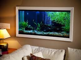Home Accessories:Perfect Fish Tanks Pics For Your House On The Wall Perfect Fish  Tanks