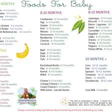 Www Wholesomebabyfood Com Handy For The Next Few Months