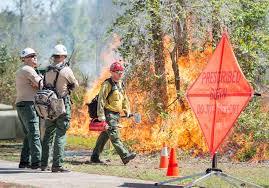 Where there's smoke, there is flame - NPS conducts controlled burns