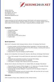 Great Cv Examples 2019 Latest Resume Format 2019 Templates 20 Examples