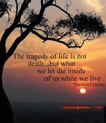Tragic Beauty Quotes Best of Tragedy Of Life Quotes Livingoutmypurpose
