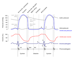 Hertz Conversion Chart Hertz Wikipedia