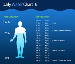 The Daily Water Chart Being Bettr