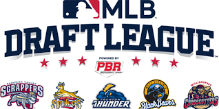 MLB Draft League opening in 2021