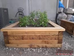 box garden. GARDEN BOXES Box Garden E