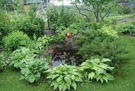 how to make a wildlife pond swell uk
