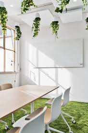 informal green wall indoors. Hanging Office Plants At Tara Pac Offices - Lund Informal Green Wall Indoors A
