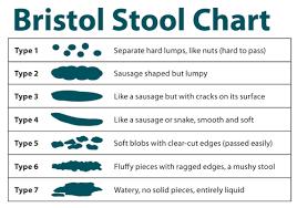 Bristol Stool Chart Gastrointestinal Society