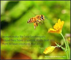 Secret Life Of Bees Quotes Extraordinary Secret Life Of Bees Quotes The Secret Life Of Bees By Sue Monk
