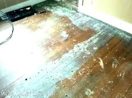 remove glue from linoleum floor removing linoleum tile from concrete question removing