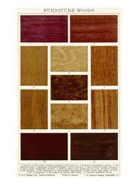 types of woods for furniture. Different Types Wood Furniture Of Woods For