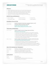 Professional Cv Resume Strong Layout Suitable For Accountant
