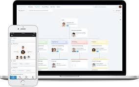 Best Org Chart Builder 7 Best Org Chart Software For 2019