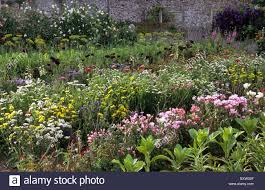 Plants For Kitchen Garden Parham Sussex The Kitchen Garden Cut Flower Borders Summer August