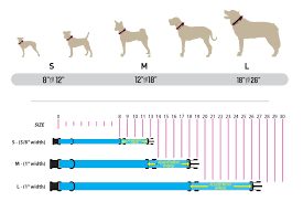 Small Dog Collar Size Chart Collar Harness Leash Sizing Information Wolfgang Man
