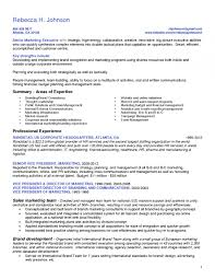Online Professional Resume Online Professional Resume Writing Services Ga Online Professional