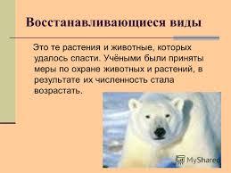 Презентация на тему Как сохранить редкие виды животных и  11 Восстанавливающиеся