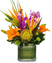 Exotic Floral Arrangements | out of 5 dentists recommend this WordPress.com  site