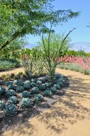 sunnylands about plants succulent garden cactus garden landscaping garden design