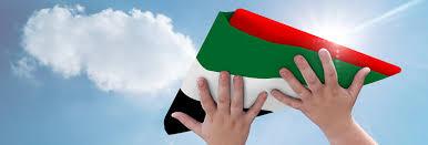 Flag Hoisting Pole Design Planflags Custom Design Flag Suppliers In Dubai Uae