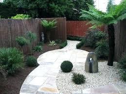no grass modern backyard landscaping