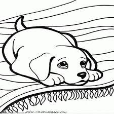 25 Vinden Kleurplaat Puppy Hondje Mandala Kleurplaat Voor Kinderen
