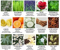 Essential Oil Benefits Chart Aromatherapy Essential Oil Chart University Health News