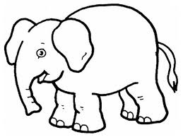 Elephant Preschool Coloring Pages Zoo Animals Animal Coloring