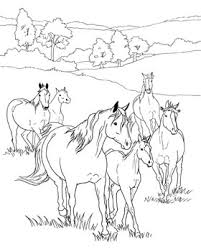 Horses Coloring Pages Page Herd In The Meadow Ayushseminarmahainfo