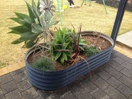 raised garden beds rainfill tanks and