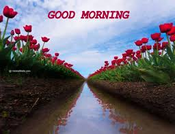 Google Good Morning Quotes Best of Never Let Anyone Take The You Out Of Yourself Quotes