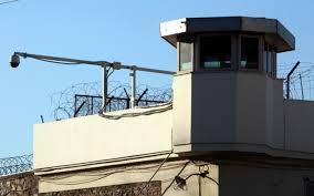 Αποτέλεσμα εικόνας για κορυδαλοσ φυλακεσ